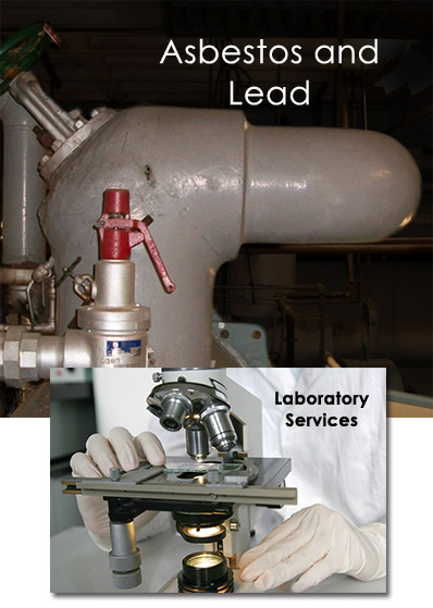 Asbestos And Lead Field Environmental